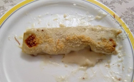 canelon de pato